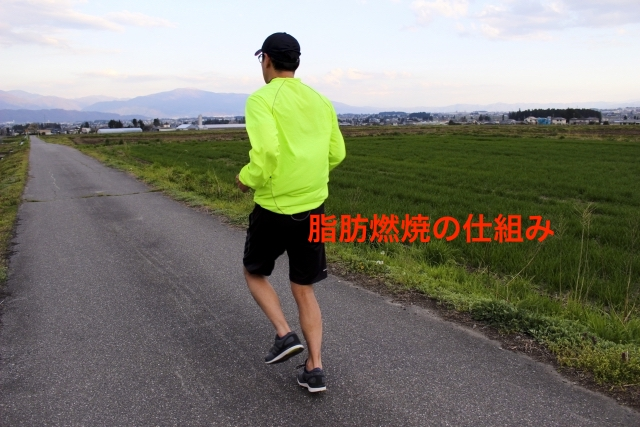 走る 男性