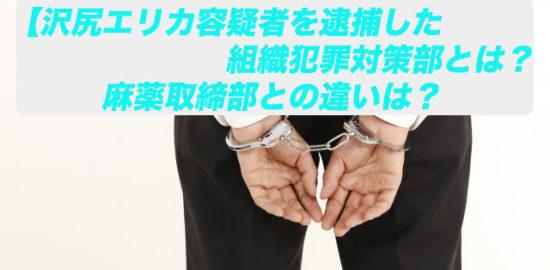 組織犯罪対策部 麻薬取締部